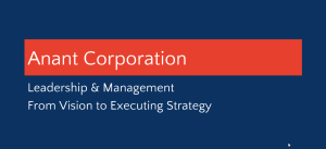 From Vision to Strategy Execution